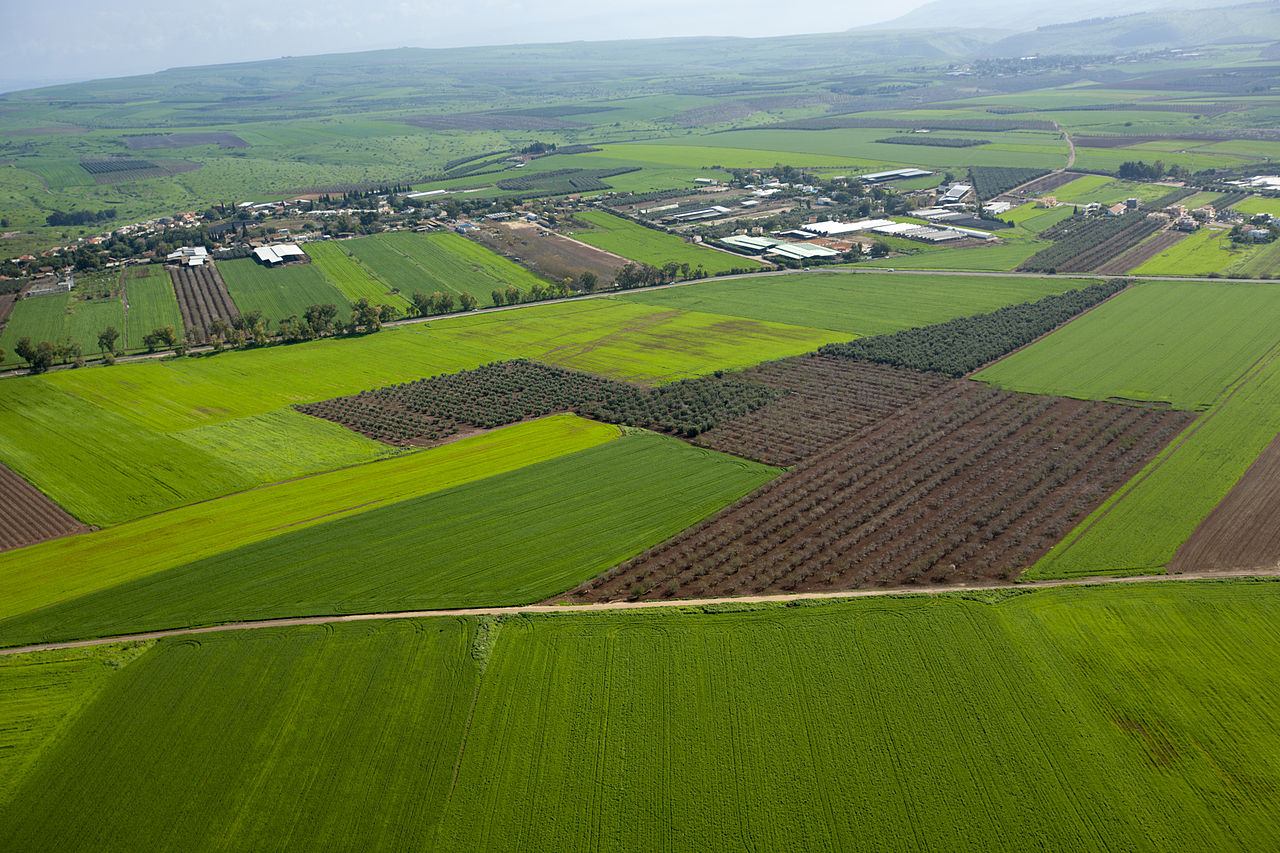 Green Galilee aerial view
